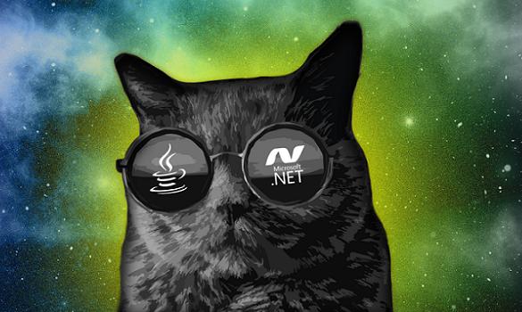 DotNet vs Java: Kiểu Dữ Liệu Có Cấu Trúc