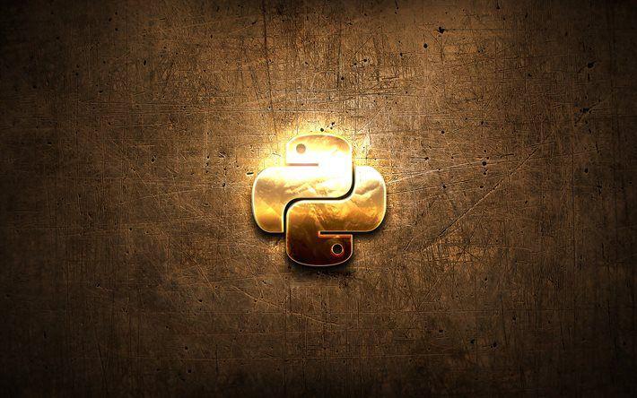 Python Có Phải Là Ngôn Ngữ Của Tương Lai?